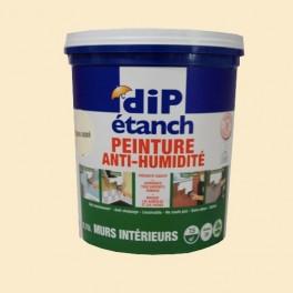 dip etanche peinture anti humidite resine de protection pour peinture. Black Bedroom Furniture Sets. Home Design Ideas
