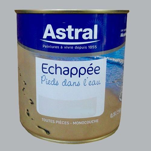 Peinture astral echapp e pieds dans l 39 eau galet poli for Peintures astral