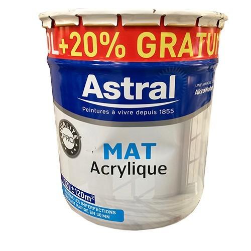 Peinture astral mat acrylique pas cher en ligne for Peinture interieur maison pas cher