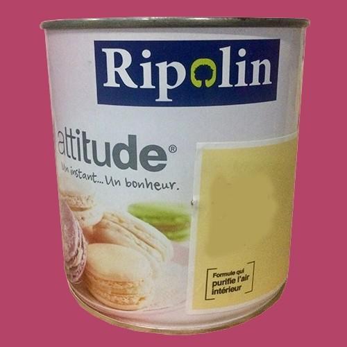 "RIPOLIN Peinture Attitude ""Pause sucrée"" Brillant Rose praliné"
