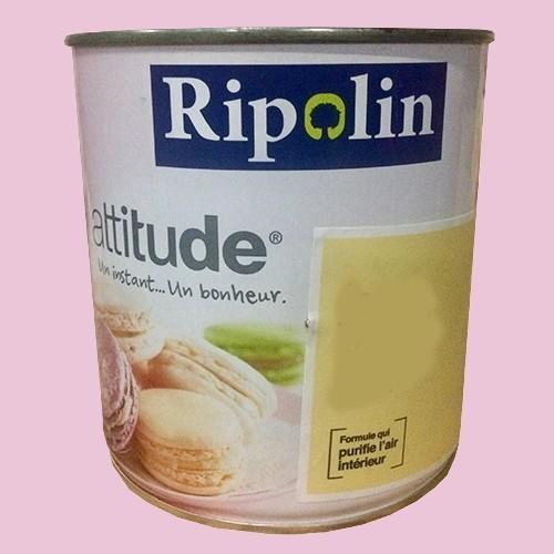 "RIPOLIN Peinture Attitude ""Pause sucrée"" Satin Rose macaron"