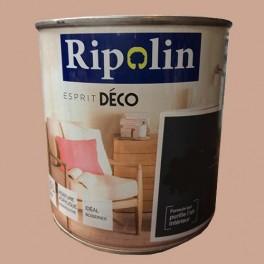 """RIPOLIN Peinture Acrylique """"Esprit Déco"""" Bambou satin"""