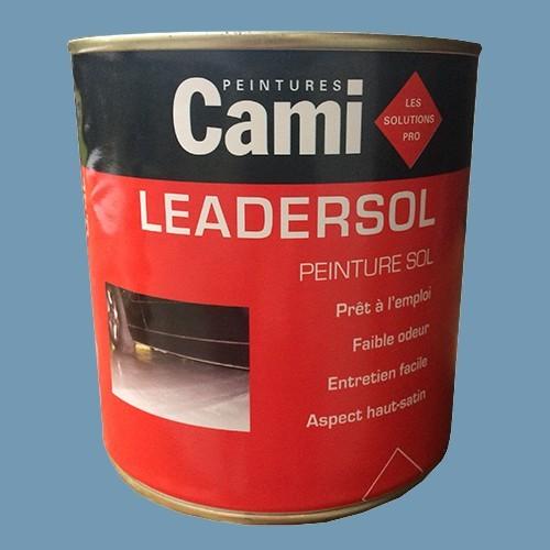 CAMI Peinture LEADERSOL Bleu zinc