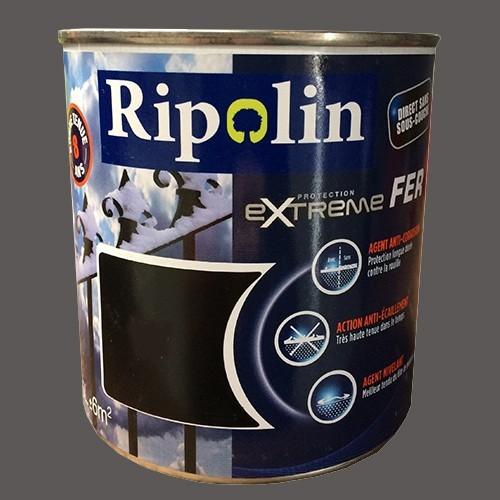 RIPOLIN Protection Extrême Fer Gris argenté