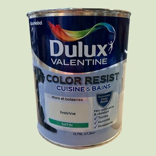 Dulux Valentine Peinture acrylique Color Resist Cuisine & Bain Tendrement vert