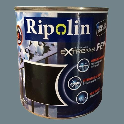 RIPOLIN Protection Extrême Fer Gris bleuté