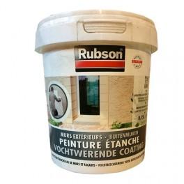 RUBSON Peinture étanche Murs extérieurs Blanc