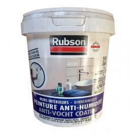 Rubson Peinture Anti Humidité