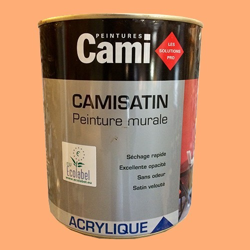 CAMI Peinture Acrylique CAMISATIN Saumon
