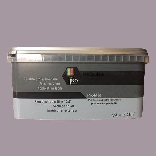 Pro Couleurs Peinture Acrylique Mat 2 5l Gris Taupe