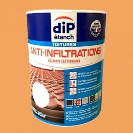 DIP étanch Anti-Infiltration Toitures Terre cuite