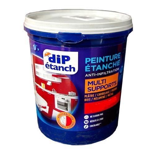 DIP Peinture Étanche Acrylique Multi-Supports Blanc