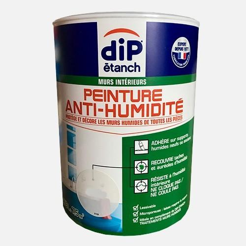 DIP étanch Peinture Anti-humidité Gris perle