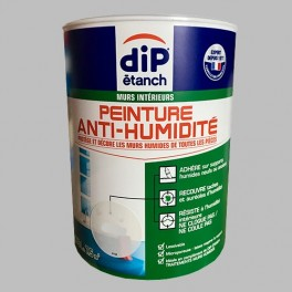 DIP étanch Peinture Anti-humidité Gris galet
