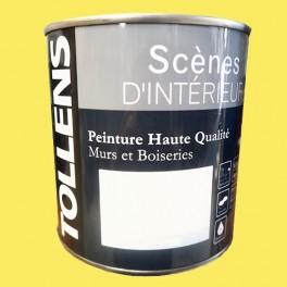 Tollens Peinture Acrylique Scènes D Intérieur Satin Vert Anis
