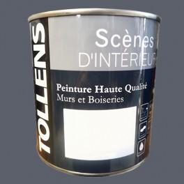 Tollens Peinture Acrylique Scènes D Intérieur Mat Gris Anthracite
