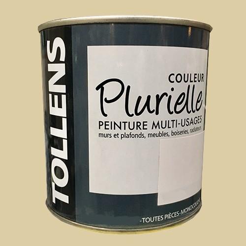 """TOLLENS Peinture acrylique multi-usages """"Couleur Plurielle"""" satin Soignée"""