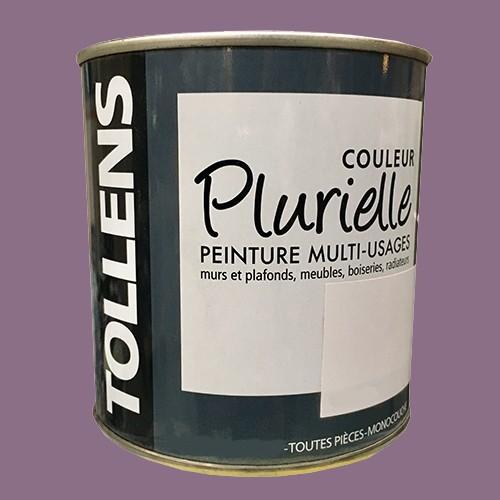 """TOLLENS Peinture acrylique multi-usages """"Couleur Plurielle"""" mat Ravissante"""