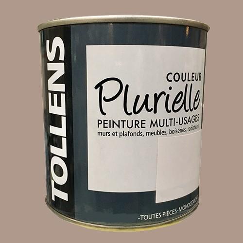 """TOLLENS Peinture acrylique multi-usages """"Couleur Plurielle"""" mat Epicée"""