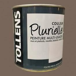 """TOLLENS Peinture acrylique multi-usages """"Couleur Plurielle"""" mat Sauvage"""