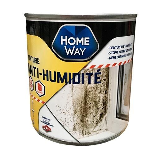 OXI Home Way Peinture Anti-humidité