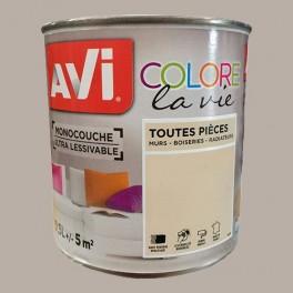 AVI Colore la Vie Peinture Toutes pièces Sisal