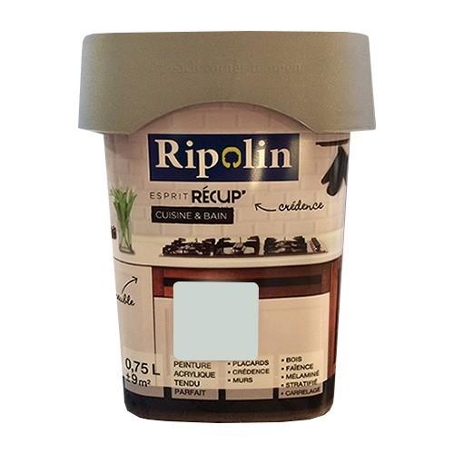 RIPOLIN Peinture Esprit Récup' Cuisine & Bain Gris clair