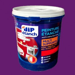 DIP Peinture Étanche Acrylique Multi-Supports Prune