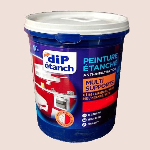 DIP Peinture Étanche Acrylique Multi-Supports Lin