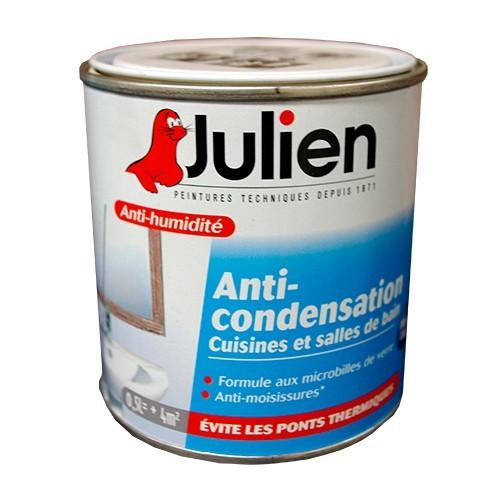 Julien Peinture Anti-Condensation