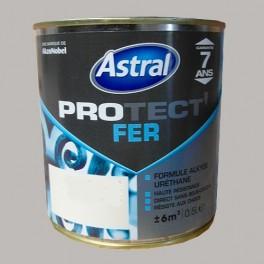 ASTRAL Peinture Protect'Fer Origanum Brillant