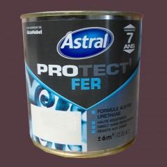 ASTRAL Peinture Protect'Fer Ferronerie Brillant