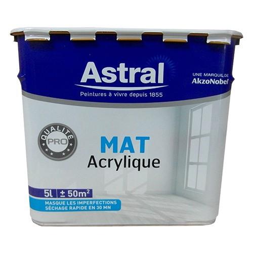 Peinture ASTRAL Mat Acrylique
